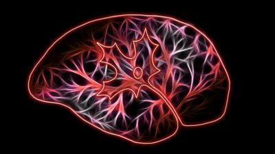 Introducing NeuroLibre